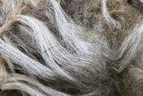 500 gram A-klasse - Karakul (gemêleerd vos)_