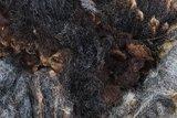 1 kilo basisklasse - Hollands boerenschaap (grijsbruin)_
