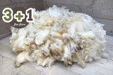 4 kilo A-klasse - Swifter (ivoorwit)_
