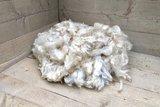 500 gram A-klasse - Romney (ivoorwit)_