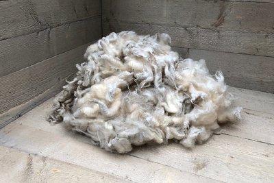 500 gram lamswol - Fries en Zeeuws Melkschaap (ivoorwit)