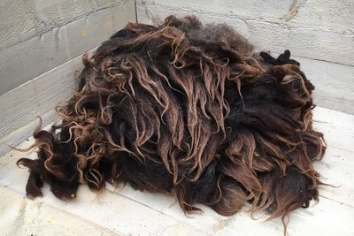 1 kilo A-klasse - Drents Heideschaap (bruinzwart)