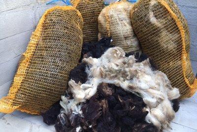 Volume voordeel: 5 kilo basis wol / vulwol - puur (gemengd)