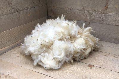500 gram lamswol - Bleu du Maine (ivoorwit)