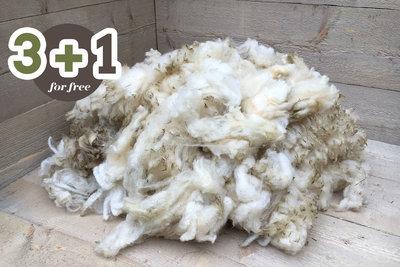 4 kilo basisklasse - Hollands boerenschaap (ivoorwit)
