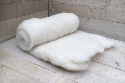 500 gram gewassen kaardvlies - Texelaar (ivoorwit)