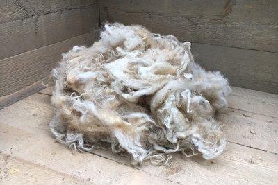500 gram lamswol - Racka (ivoorwit)