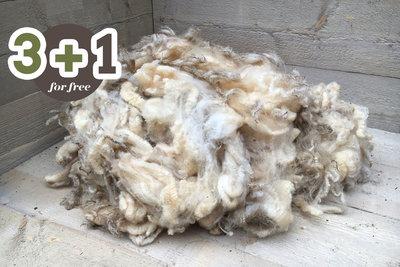 4 kilo lamswol - Texelaar (ivoorwit)