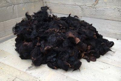 1 kilo lamswol - Zwartbles (bruinzwart)