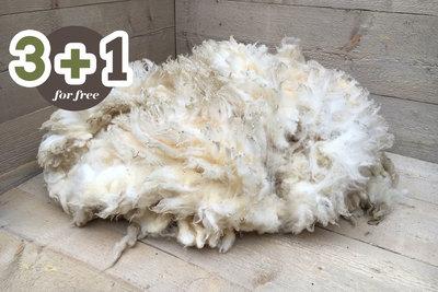 4 kilo lamswol - Swifter (ivoorwit)