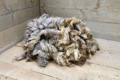 500 gram A-klasse - Coburger Fuchs (vlas)