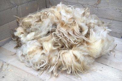 1 kilo A-klasse - Drents Heideschaap (ivoorwit)