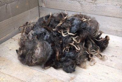 500 gram A-klasse - Drents Heideschaap (donkergrijs)
