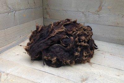 500 gram lamswol - Zwartbles (roodbruin)