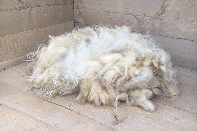 500 gram A-klasse - Veluws Heideschaap (ivoorwit)