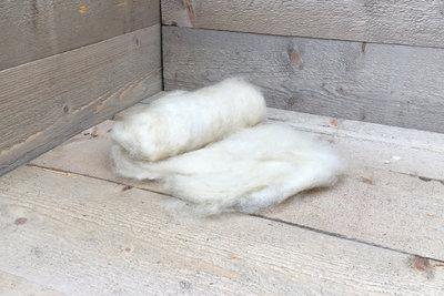 100 gram gewassen kaardvlies - Wensleydale (ivoorwit)